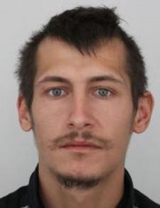 Mstsk policie hled strnky Mstsk st Praha-Suchdol